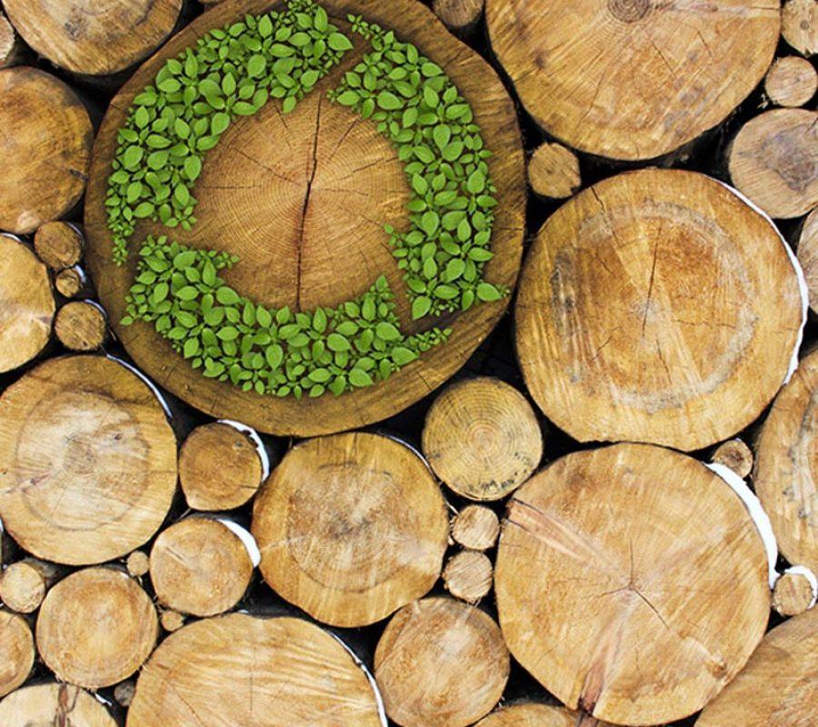 woodeco2